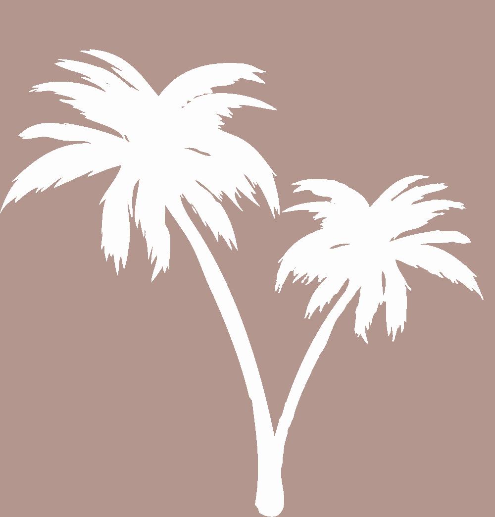 ラックアメリカ イメージ素材「ヤシの木」 画像